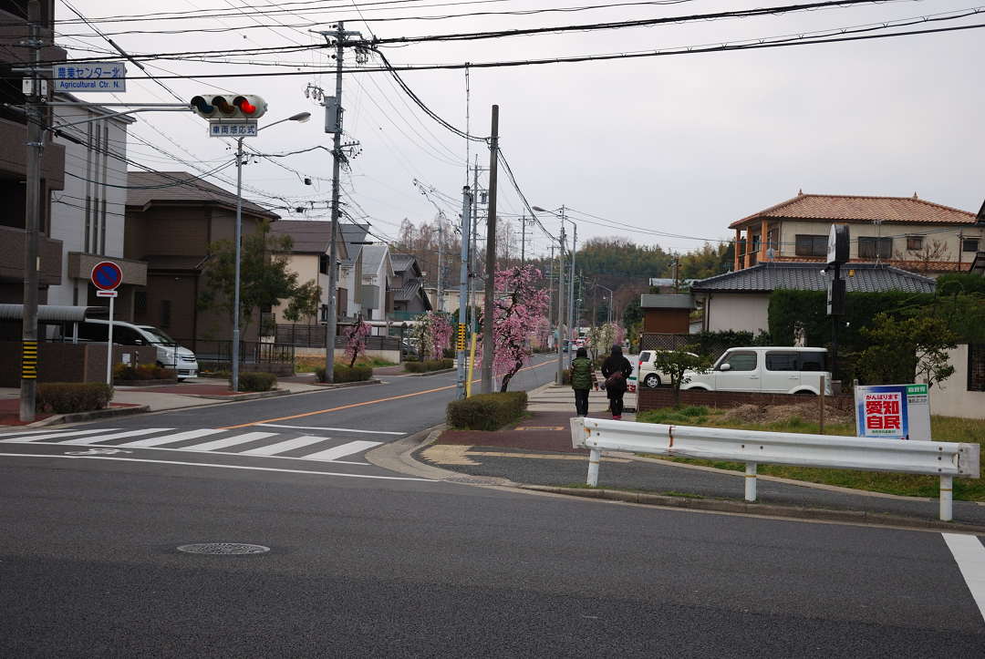 Nikon D60で撮った写真を観賞批評するスレ [転載禁止]©2ch.net->画像>844枚