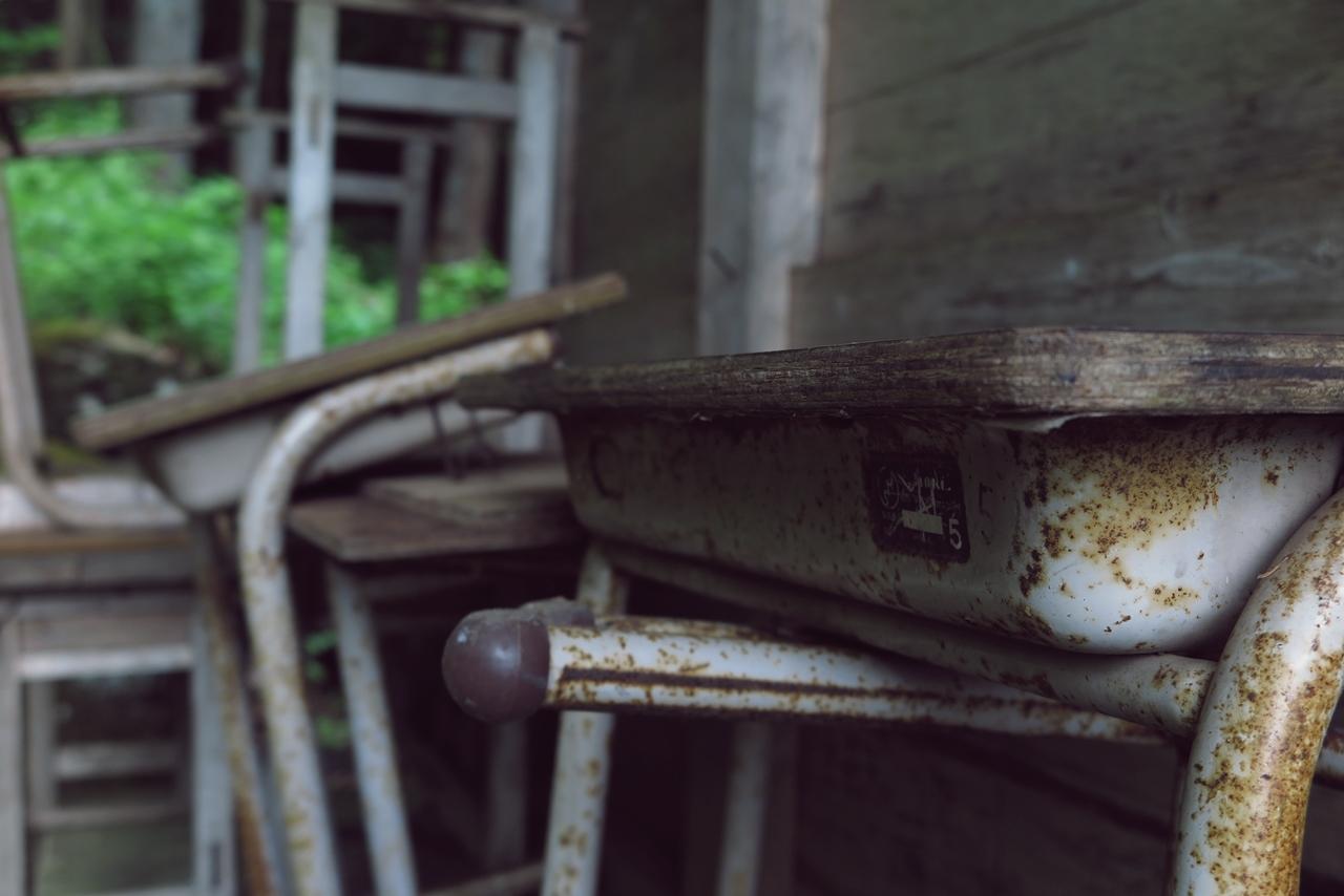 初心者が気軽に何でも撮影してUPするスレ part24 [無断転載禁止]©2ch.net->画像>355枚