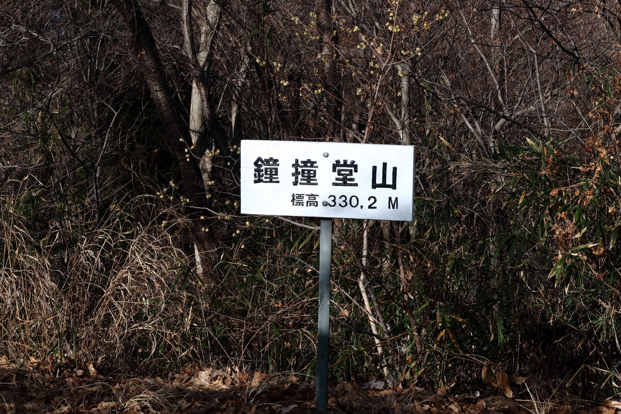 暖かくなってきたし登山を始めようと思う 関東で初心者におすすめな山あるか?  [166962459]YouTube動画>2本 ->画像>68枚